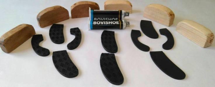 bovishoe